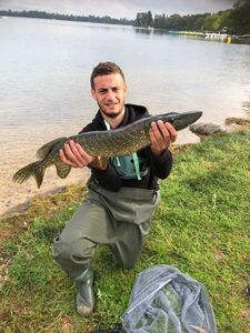 Northern Pike — Idris Nouasria