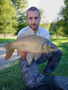 Crucian Carp — Nicolas flyfishing
