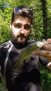 Largemouth Bass — Spyder Fish