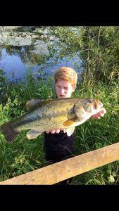 Largemouth Bass — Noah Brier