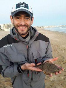 European Flounder — David Barbeau