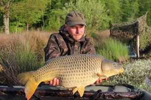 Common Carp — Teddy Pacheco-Pires