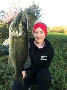 Largemouth Bass — Eloïse Lambert