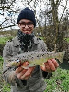 Brown Trout — Louis Pont
