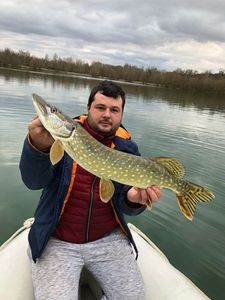 Northern Pike — Eli Levy