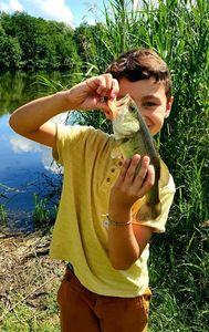 Largemouth Bass — J H
