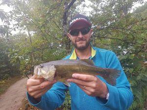 Smallmouth Bass — Benoit Denissel