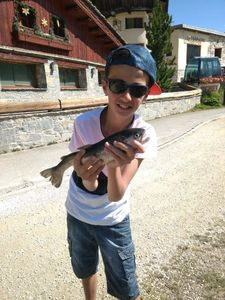 Rainbow Trout — Côme rockfishing
