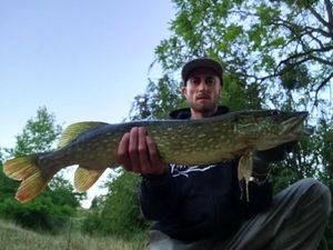 Northern Pike — CarnaFiF Fishing