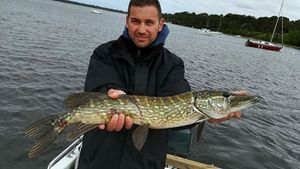 Northern Pike — Renaud MANSART