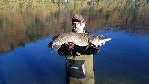 Northern Pike — chasseur de brocosaure sur insta suivez moi