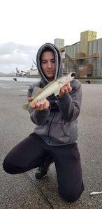 Zander — Valentin FishingBuffs