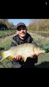Common Carp — Luc Bordonné