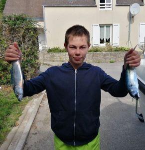 Mackerel — Antonin le Jean