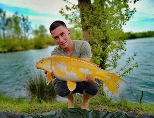 Koï Fish — Joris Grand