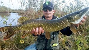 Northern Pike — Monster Carna