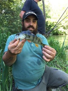 European Perch — Franck Sossy Gurrieri Pba