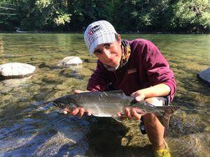 Pink Salmon — Simone Bavieri