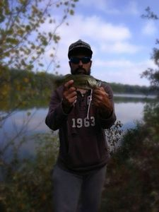 Largemouth Bass — D.Thony D