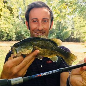 Largemouth Bass — Matthieu Marchandise