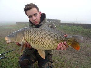 Common Carp — Marco Nardin