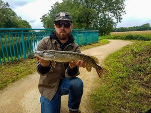 Northern Pike — Etienne Uhl
