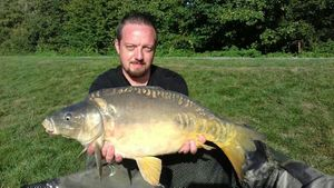 Mirror Carp — Laurent C