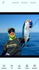 Bluefin Tuna — Nicolas Xmylife