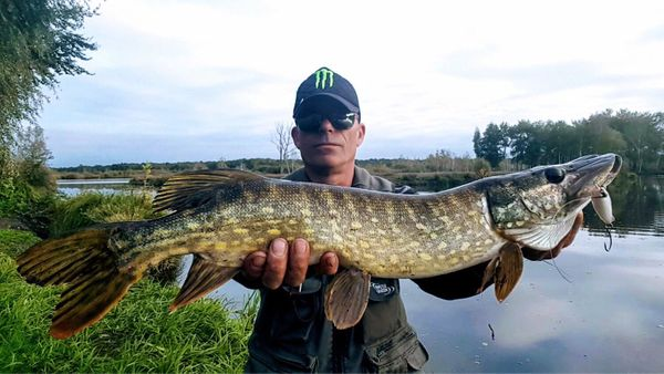 Northern Pike by Monster Carna | 1
