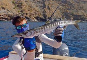 Great Barracuda — Jordan  Decomps