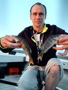 European Perch — Gregory Meytadier