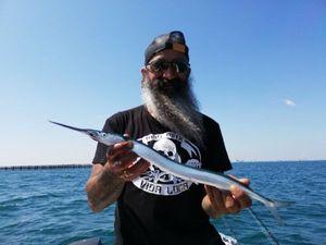 Garfish — Jordi Marti