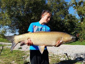 Silver Carp — team fishing 88