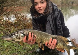 Northern Pike — Camille Lesage
