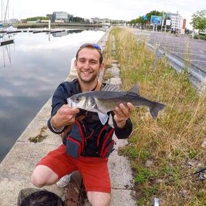 European Bass — Fishing For You Gaëtan