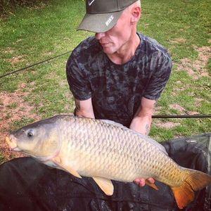 Common Carp — Simon White