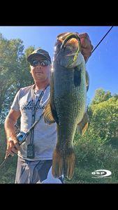 Largemouth Bass — Brice Ruchon