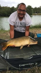 Common Carp — Romain Baillergeant