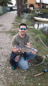 Channel Catfish — Jonathan Gori
