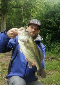 Largemouth Bass — Romain Joyas
