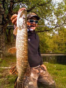 Northern Pike — Chriscarnafishing Christian Marcadet