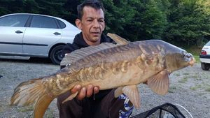Mirror Carp — Richard Ringuet