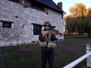 European Perch — Jules Le Boucher