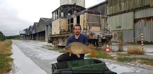 Common Carp — Jeremy Delbis