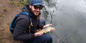 Brown Trout — Julien Mvl
