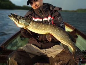 Northern Pike — corentin  colnot