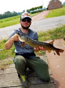 Northern Pike — Colin Joly