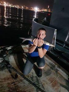 Barracuda — vincent Boudry