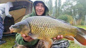 Common Carp — Christophe drincqbier