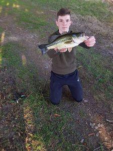 Largemouth Bass — logan prieto